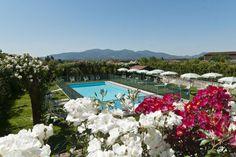 The Villa's Private Pool. Lucca, Tuscany