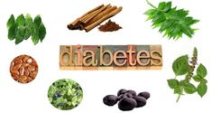 Top Home Remedies to live happily with Diabetes