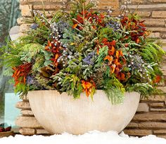 Winter containers full of evergreens, reeds & berries