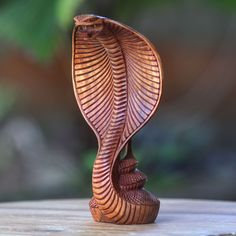 Novica Coiled Cobra Snake Hand Carved Accacia Animal Collectible Artisan Artwork Decor Accent Sculpture