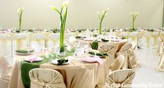 Champagne Self Tie Chair Covers use on Folding Chairs.