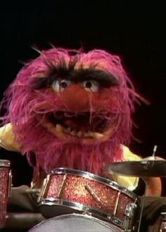 Greatest #PURPLE Drummer of All Time and a MOST #POPULAR Re-pin: RESEARCH by #DdO:) - http://www.pinterest.com/DianaDeeOsborne/drums-drumming-joy/ - Jim #Henson's #Muppet, named #ANIMAL = the primitive man & #CRAZY drummer of fictional Muppet Show band, Dr. Teeth & The Electric Mayhem. Animal was performed by Frank Oz first, in pilot for MPS until his 2000 appearance in the video game. One Muppet created by Michael K. Frith was voiced by Howie #Mandel in first 2 seasons of Muppet Babies.