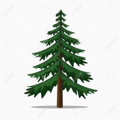 Pine Trees Vector Illustration.isolated Fir and Coniferous Tree. Stock Vector - 68285610 Tree Coloring Page, Coloring Pages, Conifer Trees, Tree Illustration, Fir Tree, Tree Silhouette, Banner Printing, Image Photography, Royalty Free Images