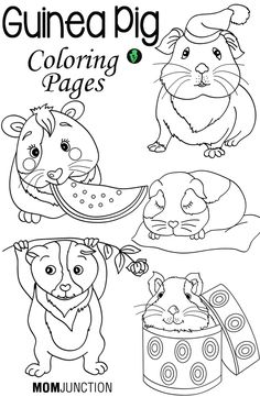 Top 10 Guinea Pig Coloring Pages For Your Toddlers