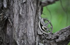 A Hunger Games Pin in a Tree