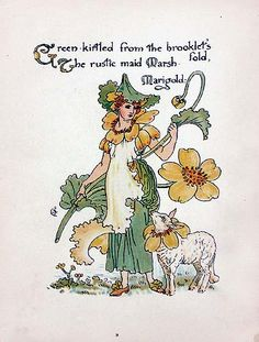 "Title: Marsh Marigold  Date: 1895  Artist: Walter Crane  Size: 7""x9.5"""