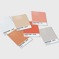 Alexandra Cook Sonrisastudio Instagram Photos And Videos In 2020 Spring Color Palette Color Palette Instagram Photo