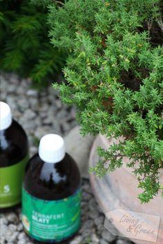 effektive Mikroorganismen Wellness, Plants, Gardening, Natural Life, Microorganisms, Health And Beauty, Tips, Nature, Lawn And Garden