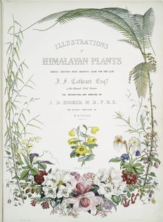 Illustrations of Himalayan plants. [Title page]. (1855)