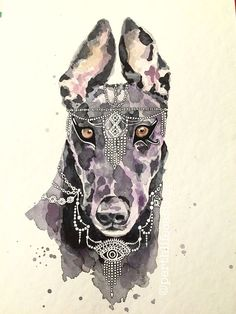Anubis Greyhound Watercolour