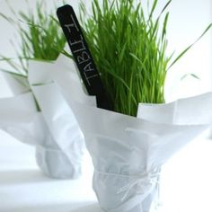 Purple shiny paper....DIY Wheatgrass Table Name and Number | Wedding Ideas and Inspiration Blog