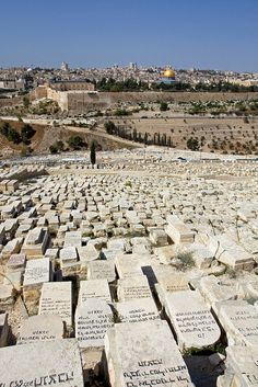 Interesting Jerusalem - http://www.travelandtransitions.com/destinations/destination-advice/asia/