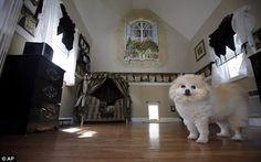 expensive-dog-house3
