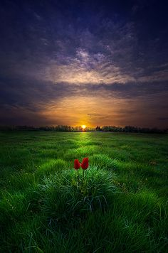 """You and I"" Horizons by Phil Koch. Lives in Milwaukee, Wisconsin, USA. phil-koch.artistwebsites.com www.facebook.com/MyHorizons❤️"