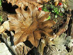 A hosta leaf bird feeder | Flickr - Photo Sharing!