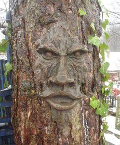 Amazon.com : The Spirit of Nottingham Woods: Greenman Tree Sculpture : Tree Faces : Patio, Lawn & Garden