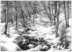 forest interior inspired by Ivan Shishkin works pencil drawing 50x70 for kuba studia drawing school