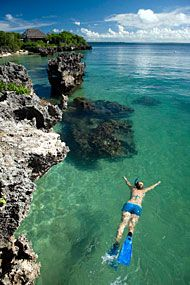 Repin if you want to go snorkeling in Mozambique!