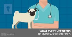 Vets are giving dog vaccines unnecessarily and it's negatively affecting our dogs' health. It's possible to protect your dog without over vaccinating him. Dog Clicker Training, Dog Training, Dog Nutrition, Healthy Pets, Pet Life, Happy Animals, Pet Dogs, Pet Vet