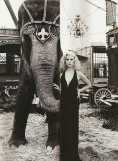 Can't go wrong with pin waves and an elephant, haven't seen the movie but love the look!