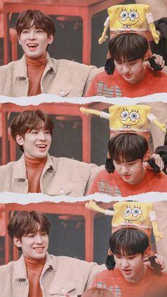 awww babies Seventeen Memes, Seventeen Wonwoo, Seventeen Debut, Mingyu Wonwoo, Seungkwan, Woozi, Hip Hop, Vernon Chwe, Choi Hansol