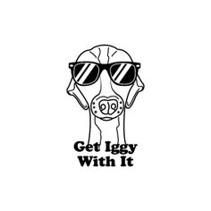 "MEDIUM DECAL Italian Greyhound ""Get Iggy With It"" 7in X 4.5in White or Black seamless cut vinyl. on Etsy, $5.00"
