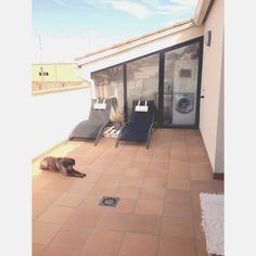 """Bueno ya va siendo hora que os enseñe mi terraza de palets, que hice este verano...sigue sin estar """"acabada"""" pero ahora ya ,hasta el proximo..."""