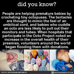 People are helping premature babies by crocheting tiny octopuses. The tentacles are thought to mimic the feel of an umbilical cord, and babies who cuddle an octo are less likely to pull out their monitors and tubes. When hospitals that participate in the Octo Project noted an increase in the overall health of their preemies, volunteers around the world began flooding them with donations. Source Source 2 Source 3