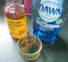 Get rid of those Nasty Fruit Flies (gnats) for good!!  ☆ Hit Share To Save On your Wall! ☆  Aghhhhh I HATE fruit flies. THIS works Awesome to get rid of them... All you need is 1/4 - 1/2 cup Apple Cider Vinegar and a drop of dish soap. Put ingredients in a small bowl, cover with cling wrap and poke a couple holes in it! That's it! Thy will fly in, get the soap on their wings and drown   Share to save Follow me here-- I post recipes daily :) https://www.facebook.com/crystal.w.daniel.3 order…