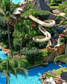 Westin Maui Resort and Spa  Fun fact - there are no snakes in Hawaii! Yet another reason to go! Plus this water slide would keep my boys busy all day.