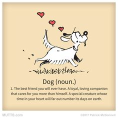 Dog - The best friend you will ever have...