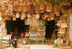 Hanoi Old Quarter (Old 36 Streets)   Vietnam Tours   Vietnam ...