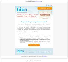 Bizo email promoting whitepaper download