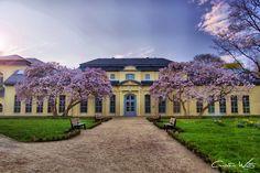 Teehaus & Orangerie Altenburg