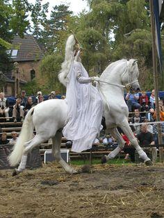 #horses   My Lady....Benefit Gala for Igor Bagrov