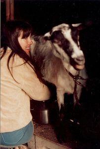 How to Raise Milk Goats