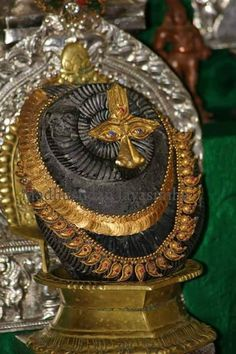 Sri Salagrama Sila, a Vishnu deity