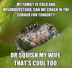 @Jennifer Hay looks like the spider in that lady's ear...