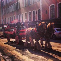 Horsepower   Helsinki, Finland