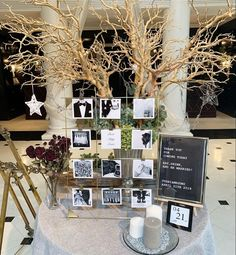 16 New Welcome Space Ideas for Adult Brides Space Wedding, Tent Wedding, Wedding Table, Wedding Welcome Table, Storybook Wedding, Wedding Photo Gallery, Event Planning Tips, Photo Corners, Glamorous Wedding