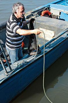 Fisherman at Douro river, Gaia - Pratos e Travessas | Food, photography and stories