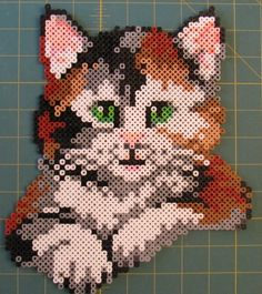 Perler Bead cat:   This is a pattern on the Perler Bead website. I did not do the background. This was the largest project I ever did. It to...