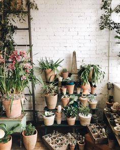 Plants + Home Office Inspiration · Workspace Design · Creative Studio · Artist Desk