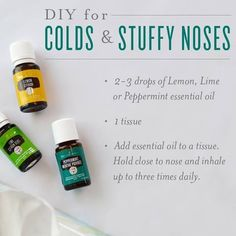 Young Living Essential Oils on Stuffy nose The next time you re about to grab a tissue to blow your nose, try breathing in some cold-relieving oils Stuffy Nose Essential Oils, Essential Oils For Cough, Oils For Sinus, Essential Oil Diffuser Blends, Essential Oil Uses, Young Living Essential Oils Recipes Cold, Oil For Cough, Young Living Diffuser, Belleza Natural