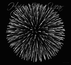Happy New Year Fireworks Gif Fireworks Gif, Happy New Year Fireworks, Happy New Year Pictures, Happy New Year Message, Happy New Year Quotes, Happy New Year Wishes, Happy New Year 2018, Happy New Year Greetings, Quotes About New Year