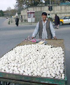 Selling eggs in Kabul, Afghanistan
