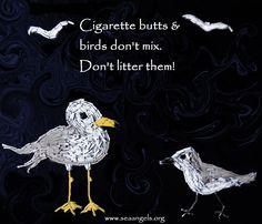Birds will ingest cigarette butts.