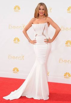Here is one of my pick for the #redcarpet at the #EmmysAwards 2014 #SofiaVergara wearing a #RobertoCavalli special gown at the 66th Annual Primetime Emmy Awards in Los Angeles… #ModernFamily #Emmys2014 #2014Emmys #Emmys #EmmysRedCarpet http://t.co/z0WVp4KBhJ Photo credit: AP Images