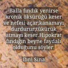 """Şifa-i Ruh on Instagram: """"#fındık #bal #ibnisina #şifalibitkiler #ecza #eczane #eczacı #tedavi #tıp #şifalıbitkiler #sina #gelenekseltip #gelenekseltıp #aidinsalih…"""""""