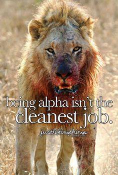Alpha Mens World